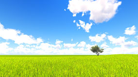 Tree field of grass and perfect sky landscape 3D rendering. Green Tree field of grass and perfect sky landscape 3D rendering Stock Images