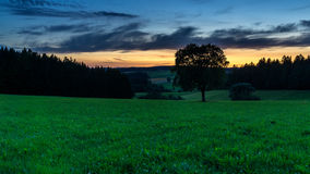 Tree on field with sunset. Landscape photo: beautiful sunset in the middle of the Black Forest Germany royalty free stock photo