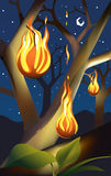 Tree on Fire. A beautiful illustrated background of a tree on fire, on a starry night Royalty Free Stock Images