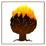 Tree on fire icon. Tree on fire artistic vector icon on the white background.. Can be used in a wide range of concepts Stock Images