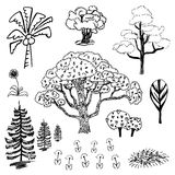 Tree and flower sketch outline vector set on white background Royalty Free Stock Photography
