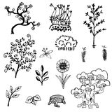Tree and flower sketch outline vector set on white background Royalty Free Stock Photos
