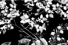 The Tree and Flowers Art paintings isolated black and white on the tiles pattern wall along the galleries of the Temple
