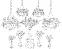 Tree, flowers and floral design elements, Sketch set Stock Photography