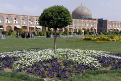 Tree and flowers. On the Naqsh-e Jahan Square in Esfahan, Iran Royalty Free Stock Photo