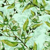 Tree flowers on a twig. Springtime seamless pattern. Spring flourish. Light green background with contour.  Watercolor painting. Hand drawn illustration. Can Royalty Free Stock Image