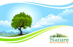 Tree with Flowing Graphic Wave Background Stock Photos