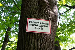 Tree in the forest with warning signboard about danger of fire. Tree in the forest with warning signboard translation from Czech: Making fire is strictly royalty free stock image