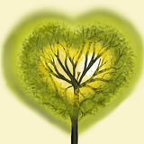 Tree in the form of heart. Green tree in the form of heart Stock Image