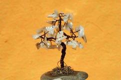 Tree of fortune Stock Photo