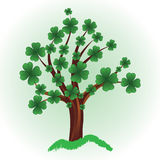 Tree with four leaf clover. Royalty Free Stock Photography