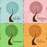 Tree in four season - winter, spring, summer, autu Stock Photos