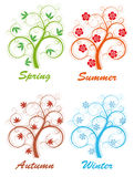 Tree four seasons Royalty Free Stock Image