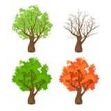 Tree at four seasons stock illustration