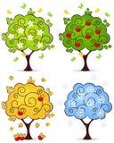 Tree four seasons Royalty Free Stock Photos