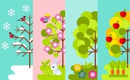 Tree in four seasons - spring, summer, autumn, winter. Stock Photos
