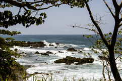 Tree framed seascape Costa Rica Royalty Free Stock Images
