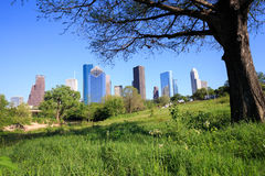 Tree framing view of downtown Houston city, Texas in a beautiful Royalty Free Stock Photography