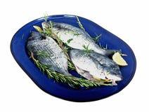Tree fresh fish on a platter Stock Image
