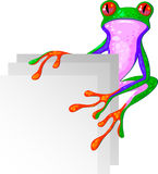 Tree Frog for the corner Stock Photos