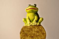 Tree frog. Green frog on a stone that predicts what will be the weather. Tree frog. Toy stock photos