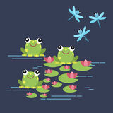 Tree frogs with lily and dragonflies. Royalty Free Stock Images