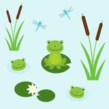 Tree frogs with lily and dragonflies. Illustration for children. Flat design style. stock illustration