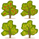 A tree with fruit. Flat design, vector illustration, vector stock illustration