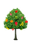 Tree with fruits isolated on a white background Royalty Free Stock Photos