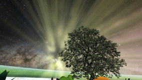 Tree between fruits over frozen water and glowing lights and our galaxy. Tree between fruits over frozen water and grass circle and glowing lights and our galaxy stock footage