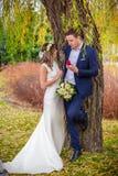 Tree garden bride Royalty Free Stock Image