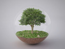 Tree in glass ball Royalty Free Stock Images