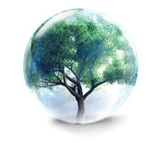 Tree in glass ball Royalty Free Stock Image