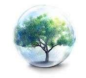 Tree in glass ball Stock Image