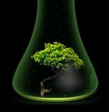Tree in glass retort. Vector Royalty Free Stock Photo