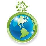 Tree on globe. Illustration, green tree on globe on white background Stock Images
