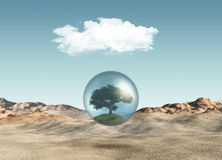 Tree in globe against a desert scene Stock Photo