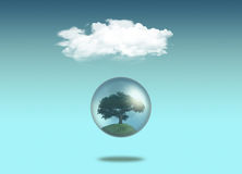 Tree in globe under a white cloud Stock Photos