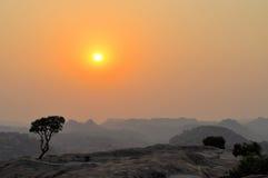 Tree on granite mountain in Hampi, India Stock Photo