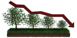 tree graph Stock Image