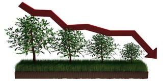 Tree graph Stock Image