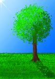 Tree graphic Royalty Free Stock Image