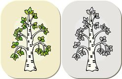 Tree in graphic cartoon style royalty free illustration