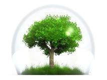 Tree and grass in bubble Royalty Free Stock Photography