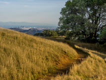 Tree and grass covered hills with city skyline Stock Image