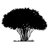 Tree and grass silhouette Royalty Free Stock Images