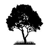 Tree and grass silhouette Royalty Free Stock Photos