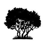 Tree and grass silhouette Stock Photography