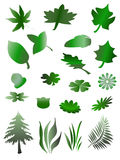 Tree, grass and vector leafs Royalty Free Stock Photography