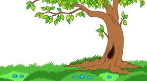 Tree in grassy landscape. Illustration Stock Images